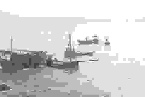 Một tàu cá của ngư dân bị đâm trên biển