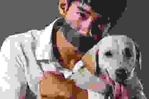 Ấn tượng bộ ảnh kêu gọi ngừng ngược đãi loài chó