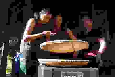 Tết Aza - nét văn hóa đặc sắc trên dãy Trường Sơn