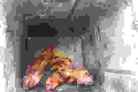 Dân dã món chuột đồng nướng thùng thơm lừng