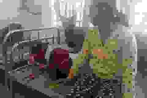 Nữ sinh lớp 9 bị đánh tại lớp đã xuất viện