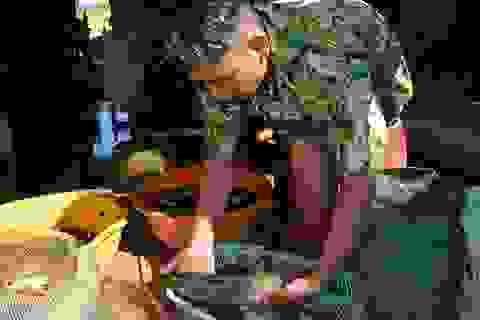 """Cà Mau lên kế hoạch bảo tồn và phát triển nguồn """"cá đồng"""""""