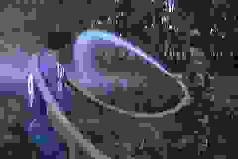 Mùa mưa, vườn quốc gia Tràm chim vẫn cháy