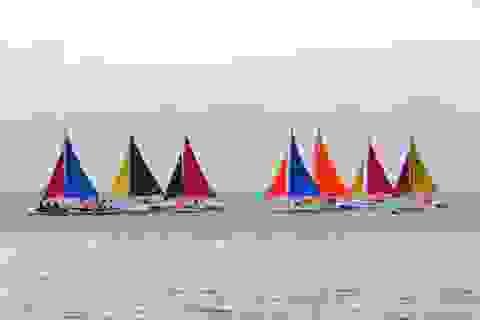 Sân chơi mới dành cho những người đam mê đua thuyền buồm