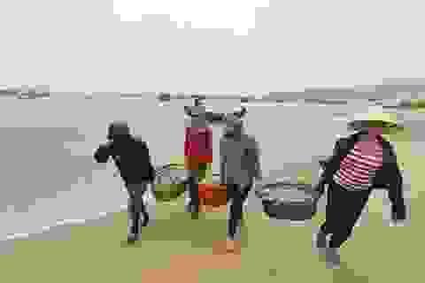 Chính phủ báo cáo kế hoạch phục hồi biển miền Trung, xử phạt Formosa