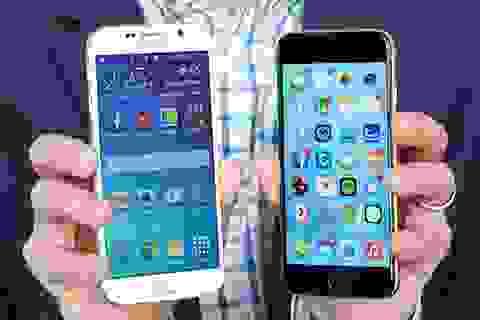 Thị phần smartphone thương hiệu Việt sụt giảm trong quý II/2015