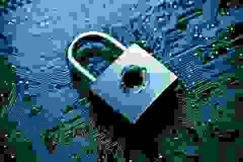 Xuất hiện nhóm tội phạm mạng Danti chuyên khai thác lỗ hổng máy tính