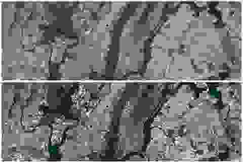 Google nâng cấp độ phân giải cao trên Google Maps và Google Earth