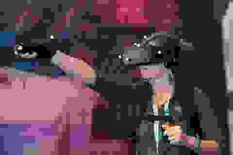 Intel giới thiệu loạt giải pháp thực tế ảo mới tại IDF 2016