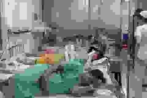 Luật mang thai hộ dưới góc nhìn của chuyên gia y tế