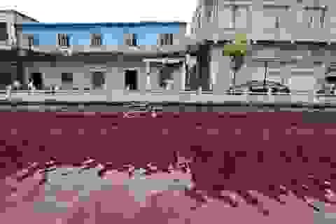 """Những dòng sông """"máu"""" kỳ lạ trên thế giới"""