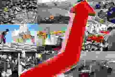 Năm 2016, kinh tế Việt Nam khó tăng trưởng ấn tượng như 2015