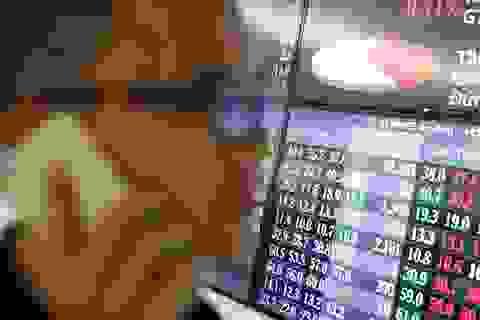 Sử dụng 8 tài khoản để thao túng cổ phiếu, một cá nhân bị phạt hơn nửa tỷ đồng