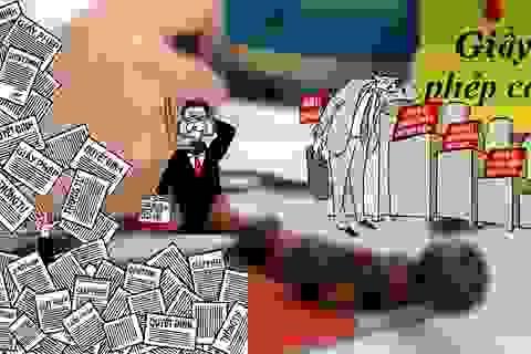 """Loại bỏ điều kiện kinh doanh trái luật: Các bộ trưởng đóng vai trò """"mắt xích"""""""