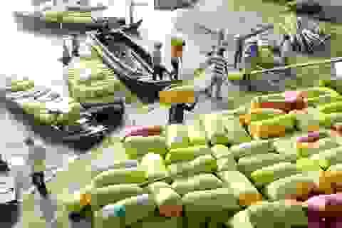 Trong hôm nay phải báo cáo Thủ tướng giải pháp vực dậy thị trường lúa gạo