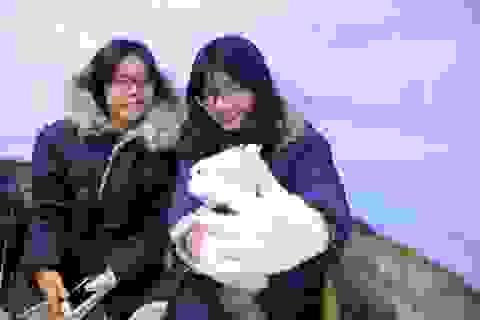 Giới trẻ Sài Gòn thích thú với quán cà phê lạnh -10 độ C