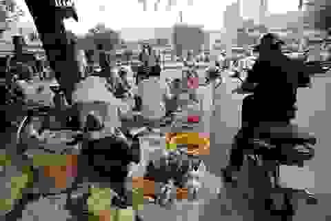 Chợ sâu bọ 20 năm tuổi ở Sài Gòn