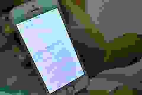 Doanh nghiệp bức xức vì ngang nhiên bị sửa số điện thoại trên Google Map