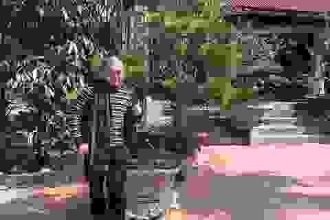 Sao Việt tất bật trước thềm giao thừa Bính Thân