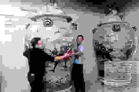 Hà Nội: Một đôi choé được đấu giá 6 tỷ 50 triệu đồng