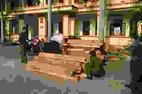 Truy bắt 8 đối tượng dùng xe máy biển giả chở gỗ lậu
