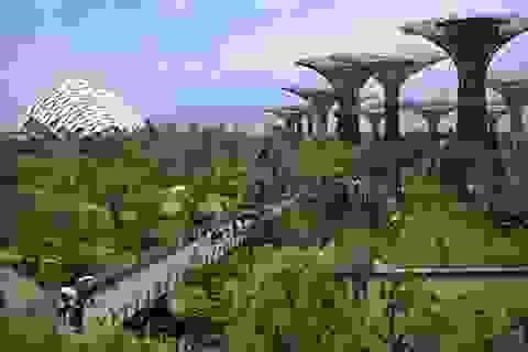 """""""Thành phố xanh"""" - là những nơi đáng sống nhất thế giới"""