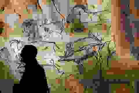 Chi 1.300 tỷ đồng để lưu giữ hang động nhân tạo lớn nhất thế giới