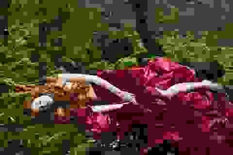 Những phim gây tranh cãi về tình dục ở LHP Cannes 2015
