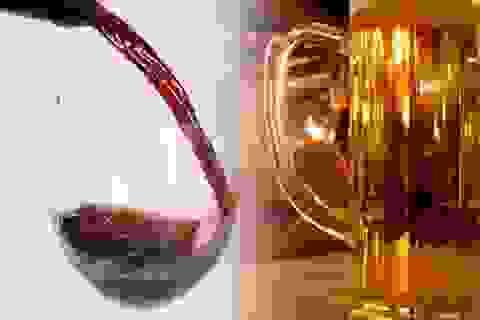 Uống bia rượu đến ngưỡng nào để không gây hại?