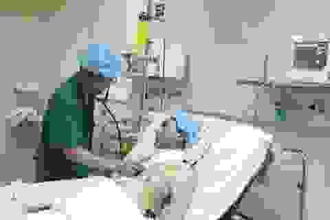 Thót tim cùng ca ghép tạng xuyên Việt đặc biệt