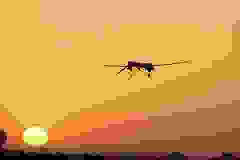IS chế tạo máy bay không người lái mang bom và tên lửa