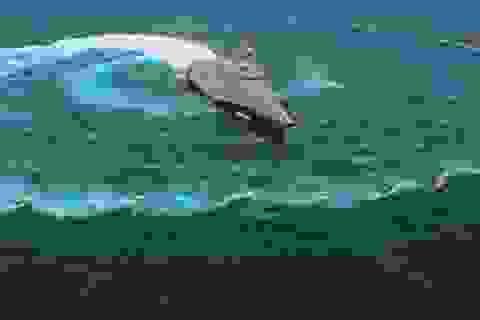 Tàu chiến Mỹ loay hoay khi bị tấn công