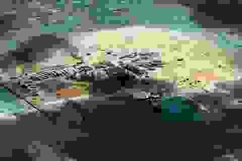 Úc lưu hành tài liệu thể hiện quan điểm chính thức về Biển Đông