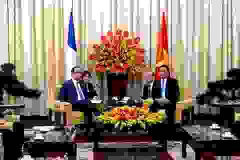 Tổng thống Pháp hội kiến Bí thư Đinh La Thăng