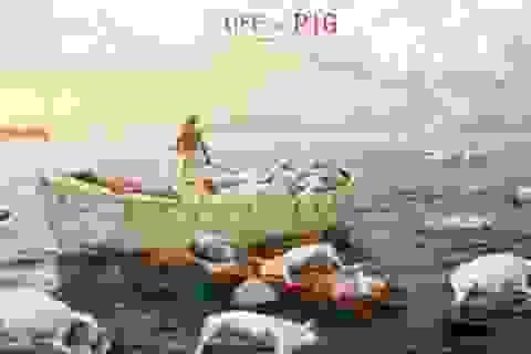 Lợn chết trôi sông và mặt trái của ngành thực phẩm Trung Quốc