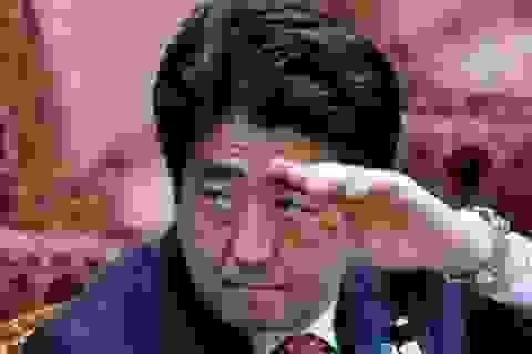 Thủ tướng Nhật thoát hiểm trong vụ đâm xe liên hoàn