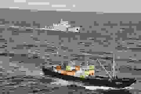 Argentina phạt tiền tàu Trung Quốc đánh cá trái phép