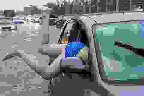 """Thành phố lớn nhất Canada """"tê liệt"""" vì mưa xối xả"""