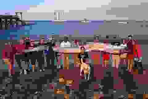 Phát hiện xác cá mái chèo khổng lồ