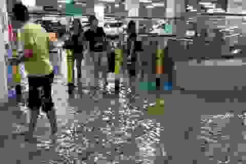 Nhà ga sân bay tỷ đô của Trung Quốc bị ngập nước