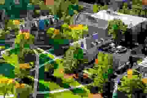 Học bổng đến 40% Đại Học New Hampshire USA