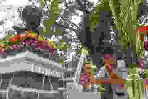 Đà Nẵng: Hàng ngàn học sinh tưởng niệm nhà yêu nước Phan Châu Trinh