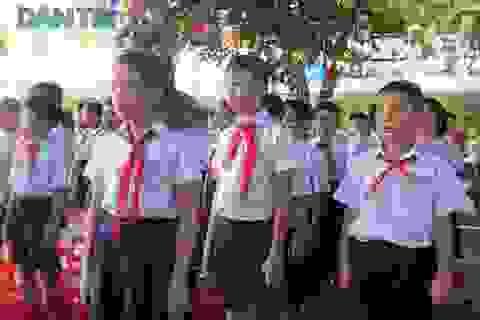 Đà Nẵng tính áp dụng tuyển sinh trực tuyến toàn thành phố