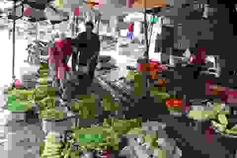 """Quảng Ngãi: Sau lũ, rau xanh """"sốt"""" giá chưa từng thấy"""