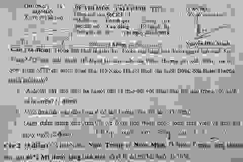 Đề thi cho... Phạm Hương sản xuất bưởi, Đàm Vĩnh Hưng sản xuất chuối