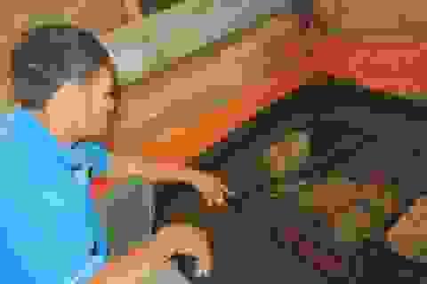 Không có chuyện nuôi lươn bằng thuốc tránh thai!