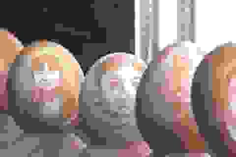 Nam sinh điêu khắc trên vỏ trứng kiếm 20 triệu/tháng