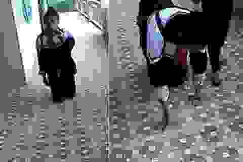 Nữ sinh bị bạn ép quỳ gối ở trường gây xôn xao mạng