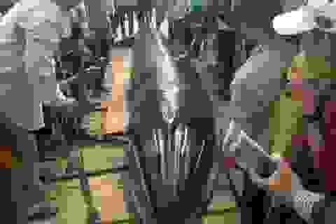 Cá voi nặng 2 tấn dạt vào bờ biển Phú Yên