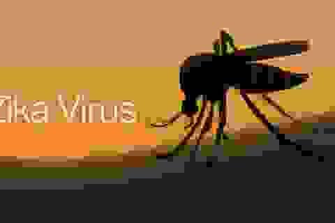 Chấm dứt ổ dịch Zika ở Phú Yên